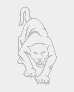 Fiberglass Platform Warehouse Ladder